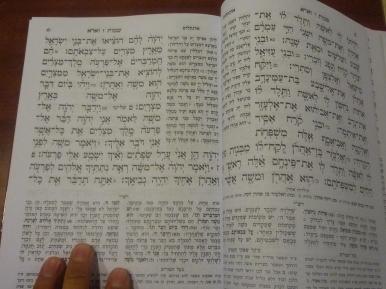和中文,阿拉伯語一樣,希伯來語由右至左