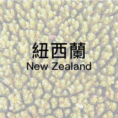 country_New_Zealand.jpg