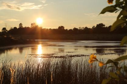 藍毗尼園升起的太陽, 照亮了三界火宅的大眾